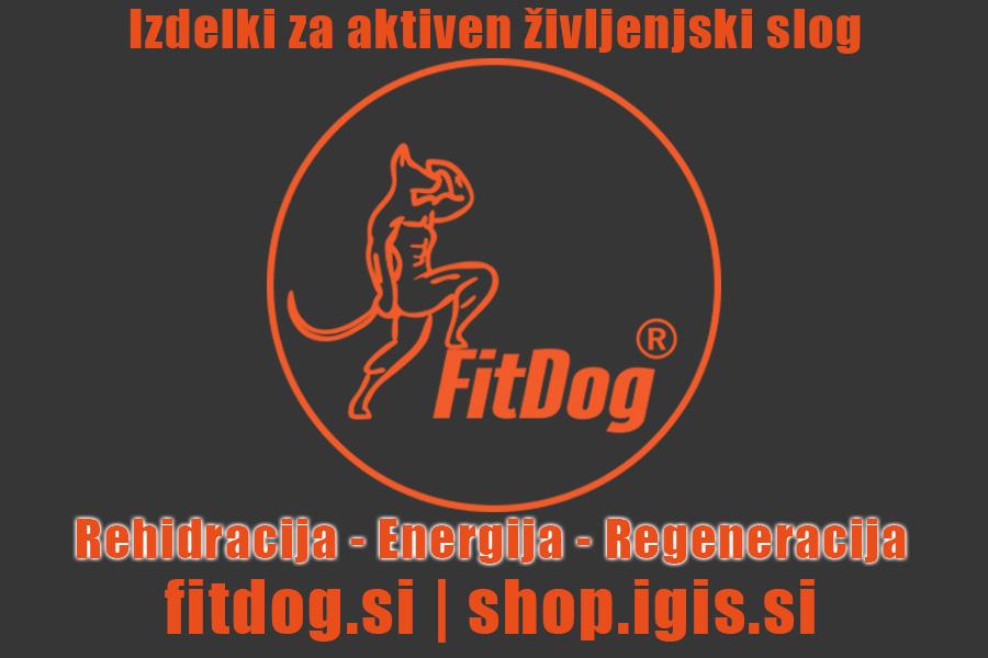 FitDog